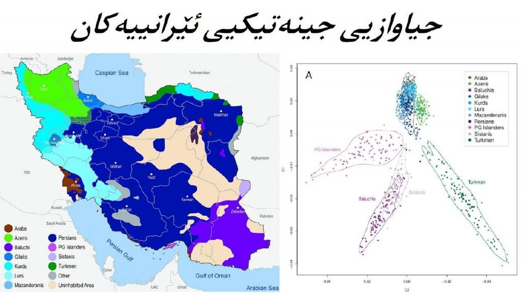 جیاوازیی جینەتیکیی فارس و کورد