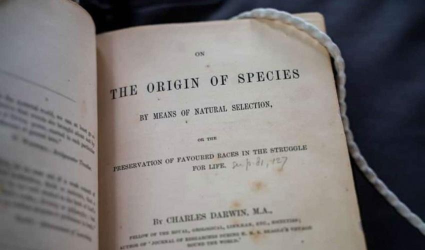 زانایان، یەکێکی تر لە بیردۆزییەکانی داروینیان سەلماند